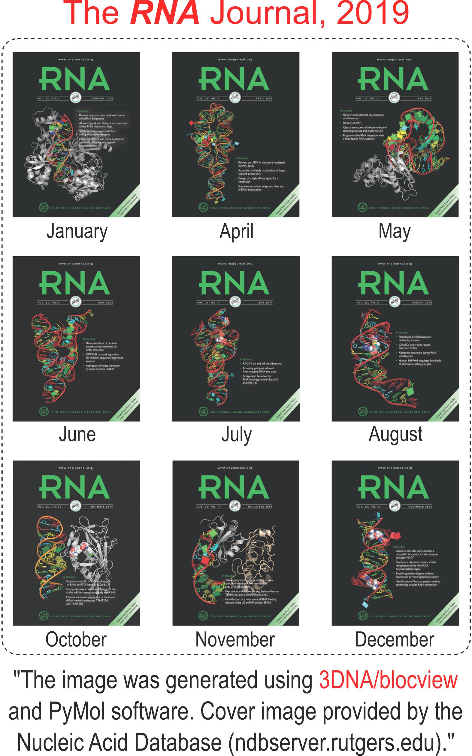 3DNA/blockview-PyMOL cartoon-block schematics in the covers of the RNA journal in 2019